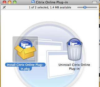 Citrix Online Plugin Install
