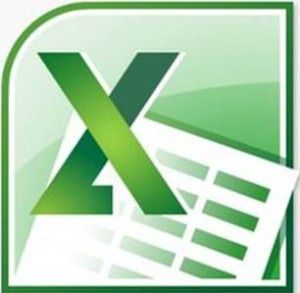 MS Office 2010 Excel Logo